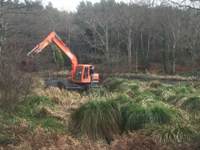 - This project involved de-silting and weed removal in a SSSI habitat. Work had to be undertaken from within the pond to eliminate bankside damage and to avoid protected plant and wildlife.